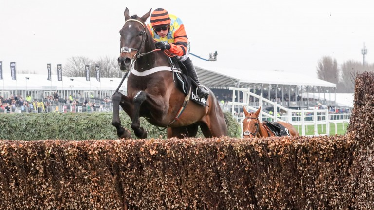 Might Bite: bids to return to form in the Many Clouds Chase