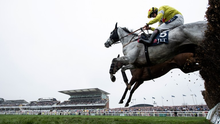 Let battle commence: Politologue (near) jumps the last alongside Min before reversing the Champion Chase form to win the Melling Chase
