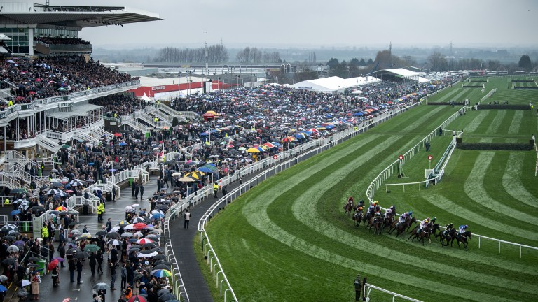 They're off: runners and riders in the opener take the turn in front of the stands