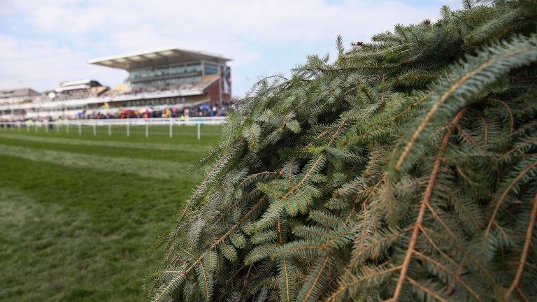 Aintree: the winner of this year's award will be announced at the home of the Grand National on November 8