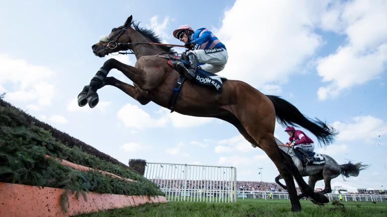 Diego Du Charmil: jumps the last fence ahead of Petit Mouchoir