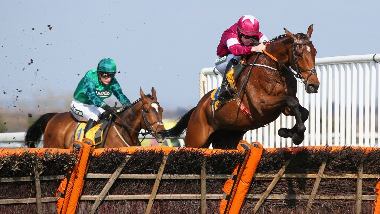 Identity Thief: winner of the Ryanair Stayers Hurdle at Aintree