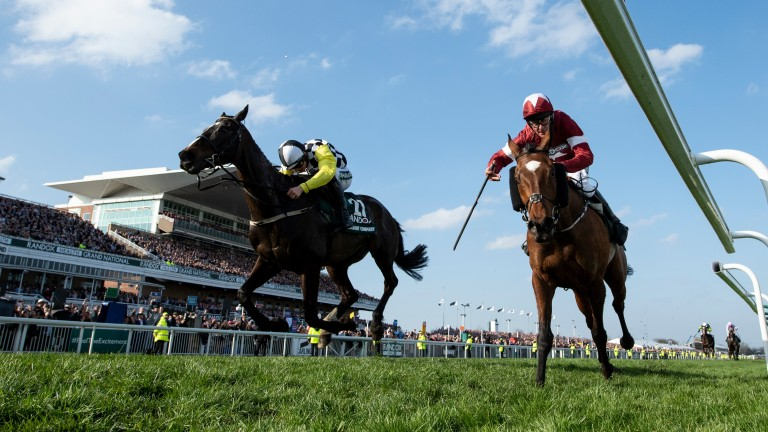 Tiger Roll (right) just fends off Pleasant Company to win the Grand National