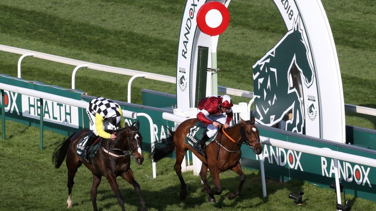Photo-finish: Tiger Roll (right) just gets the better of Pleasant Company in a thrilling finish