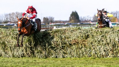 Flying Tiger: Tiger Roll clears the last under Davy Russell on his way to winning the Grand National
