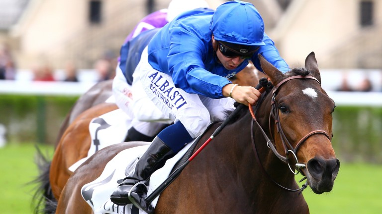 Musis Amica: will not make the line-up for Sunday's €600,000 Qatar Prix Vermeille