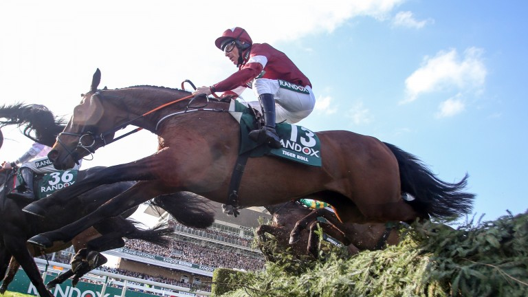 Tiger Roll and Davy Russell: on the way to a sparkling success