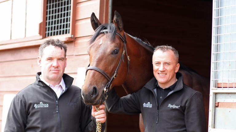 Johnny Hassett and Pat McLoughlin with the Australia colt catalogued as Lot 135 at the Tattersalls Craven Sale