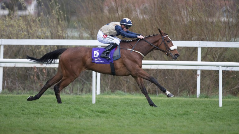 Jaega: Newtown Anner Stud homebred skips clear to win on debut at Leopardstown