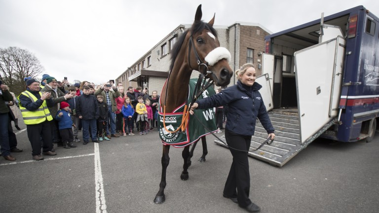 Tiger Roll: remarkable jumper also has he has three wins at the Cheltenham Festival to his name