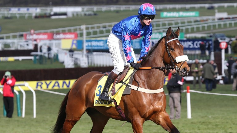 Cue Card and Joe Tizzard before winning the 2013 Ryanair Chase