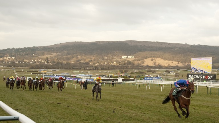 Cue Card is in a league of his own as he sprints clear to win the 2010 Champion Bumper