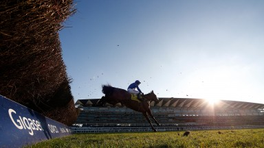 Paddy Brennan and Cue Card clear the last on their way to winning the Ascot Chase