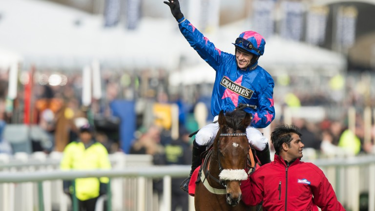 Cue Card: the lovable veteran retired from racing by trainer Colin Tizzard
