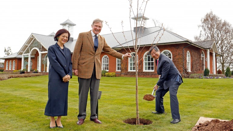 Shadwell Stud director Richard Lancaster, Mrs Yooko Tsuruoka and His Excellency Koji Tsuruoka, seen planting a Cherry tree in honour of his visit