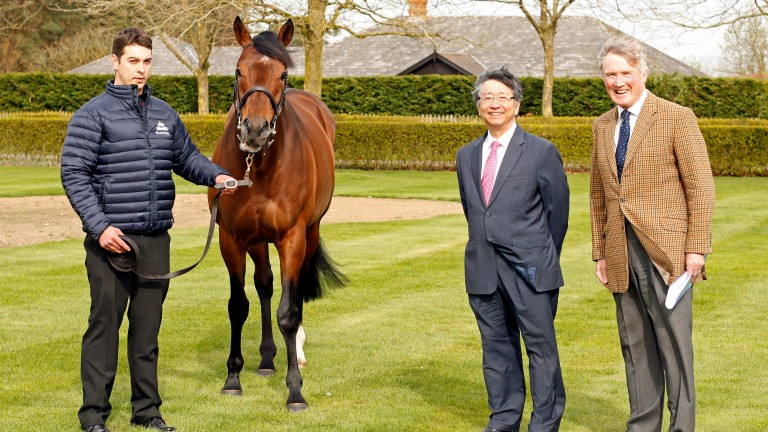 Mukhadram pictured with handler Bela Kristof, Richard Lancaster and His Excellency Koji Tsuruoka
