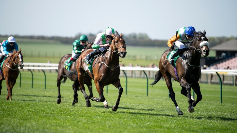 Forest Ranger (right) gets the better of Deauville in the Earl of Sefton Stakes at Newmarket