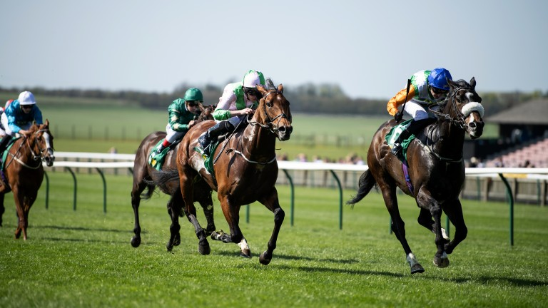 Close finish: Forest Ranger (far), trained by Richard Fahey and ridden by Tony Hamilton, gets the better of favourite Deauville in the Group 3 bet365 Earl of Sefton Stakes
