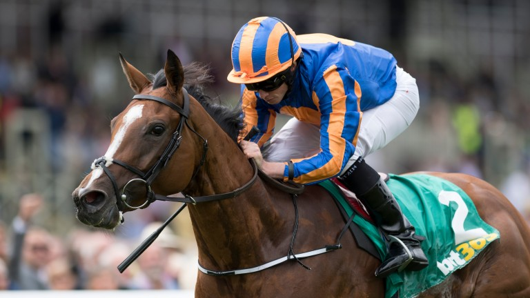 Clemmie ia among a trio of Aidan O'Brien hopefuls for the Matron