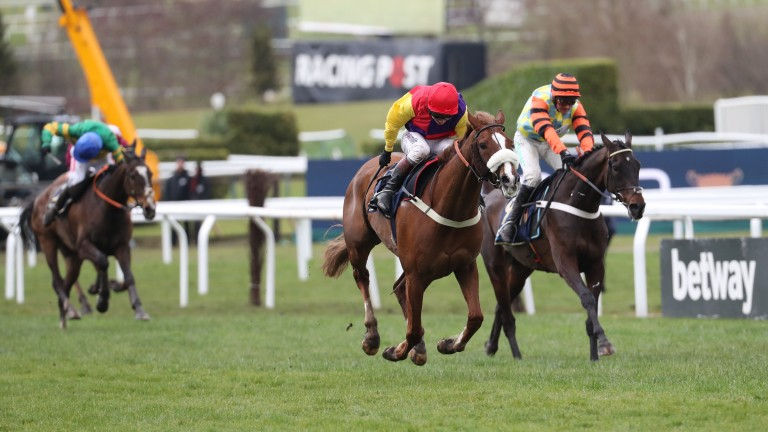 Native River's Gold Cup-winning performance has resulted in him being ranked the highest-rated horse in the Anglo-Irish steeplechase classification