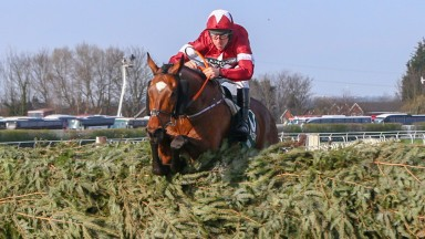 Tiger Roll: Grand National winner is the definition of versatile performer