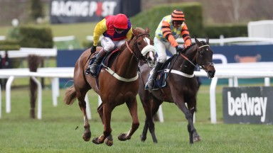 Native River (left) gets the better of Might Bite in a thrilling finish to this year's Cheltenham Gold Cup