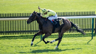 Striding to the line: Sheikha Reika wins the maiden fillies' contest