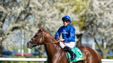 Picture perfect: Masar poses for the camera after his victory