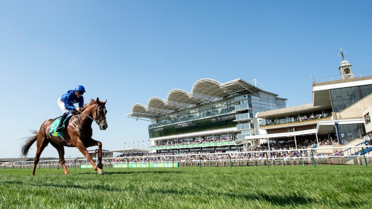 In a league of his own: Masar is an impressive winner of the Craven Stakes