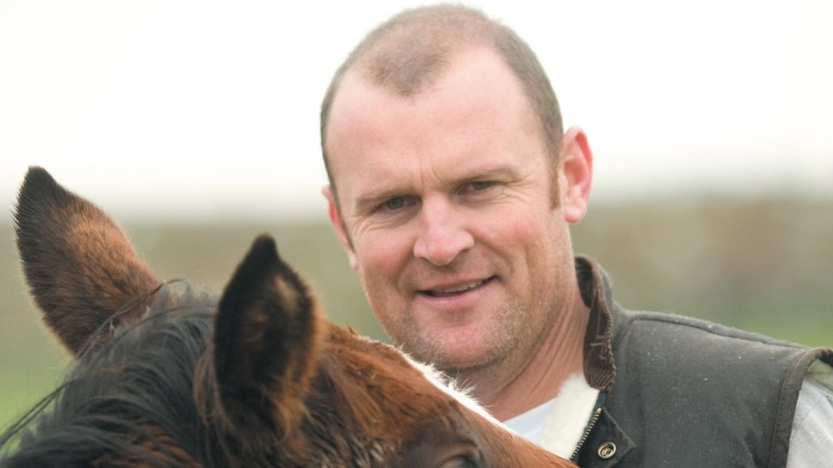 Anthony Mithen: sent nine mares to Starspangledbanner to northern hemisphere time in 2015