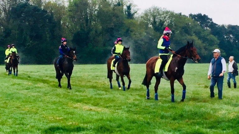 Sir Michael Stoute gets some post-gallop feedback from his work riders on Waterhall