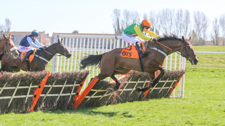 Midnight Shadow (Danny Cook) lands the Scottish Champion Hurdle