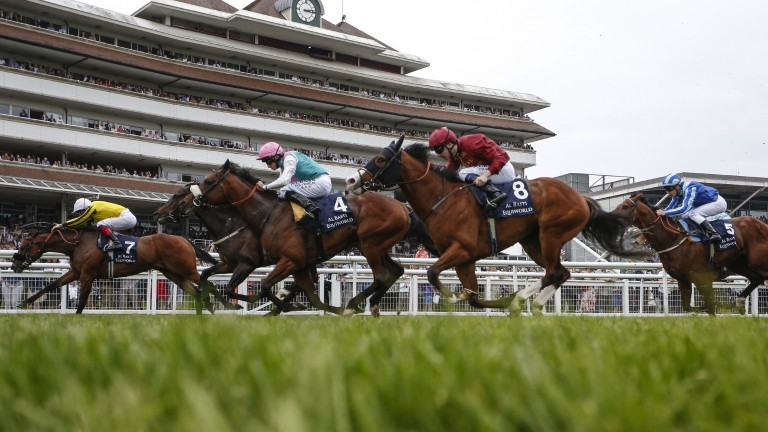 A blanket covers them: nothing in it between the first four in the Greenham Stakes won by James Garfield and Frankie Dettori (left)