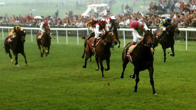 Zafonic: won the 2,000 Guineas for Andre Fabre back in 1993