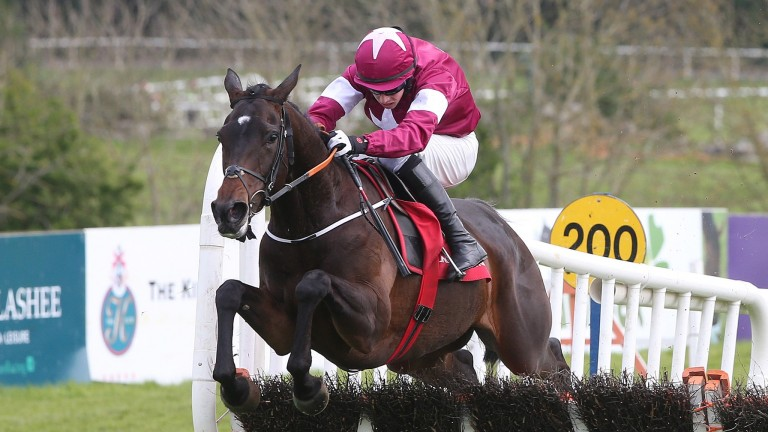 Apple's Jade and Bryan Cooper clear the last to win the 2017 Mares Champion Hurdle