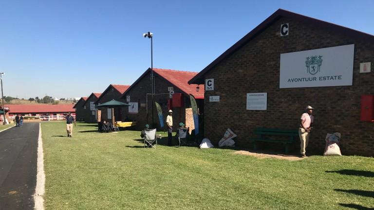 The stable yard at the Bloodstock South Africa sales complex