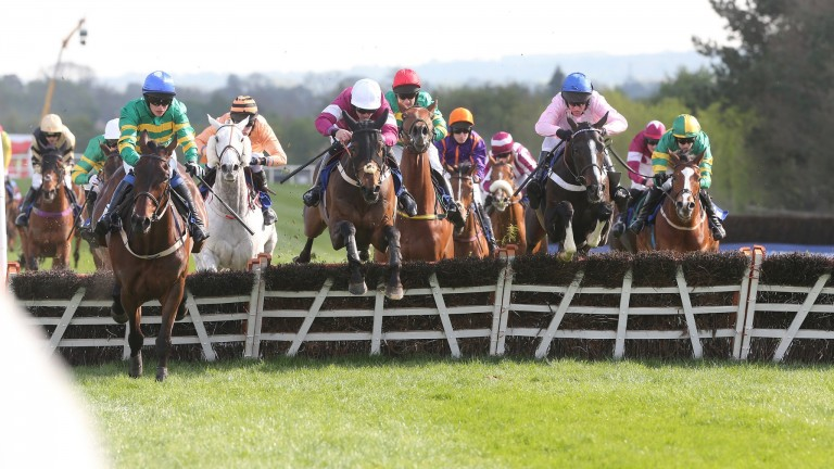 Cool Macavity (pink jacket) on his way to winning at the Punchestown festival