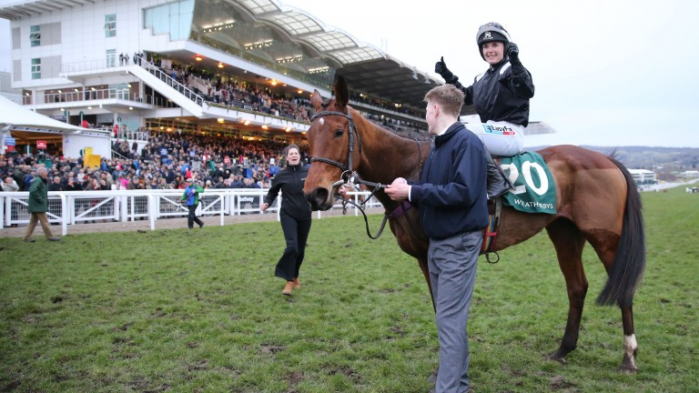 Relegate: her Flemensfirth brother will go under the hammer at Fairyhouse