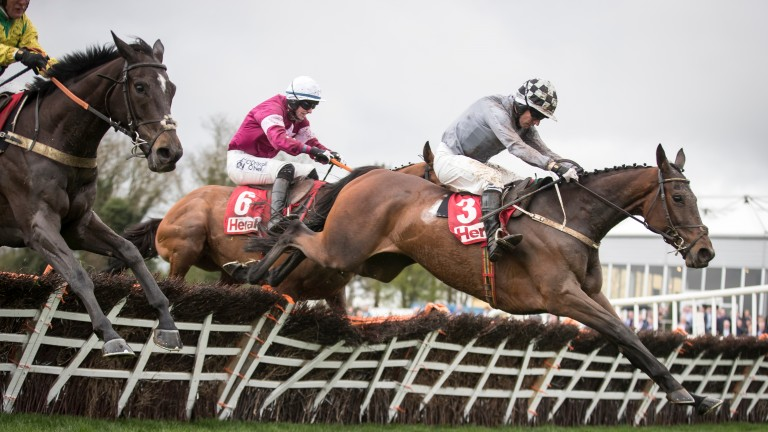 Draconien and Noel Fehily lead over the last in the Champion Novice Hurdle at Punchestown in April