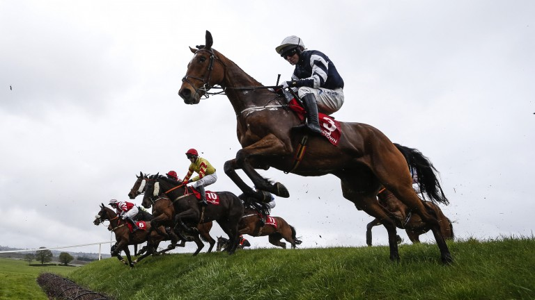 What a leap: runners clear Ruby's Double in the opening race at Punchestown