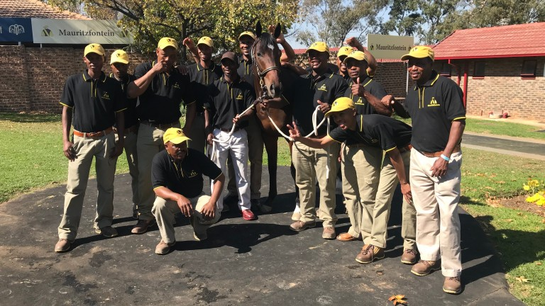 The Mauritzfontein team with Spero Optima after he fetched R800,000 at the National Yearling Sale in Johannesburg