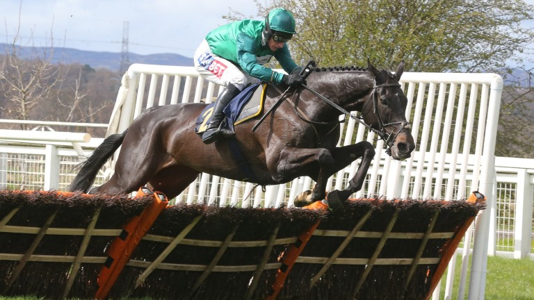 Calett Mad (Daryl Jacob): easy winner of a Listed novice hurdle at Perth