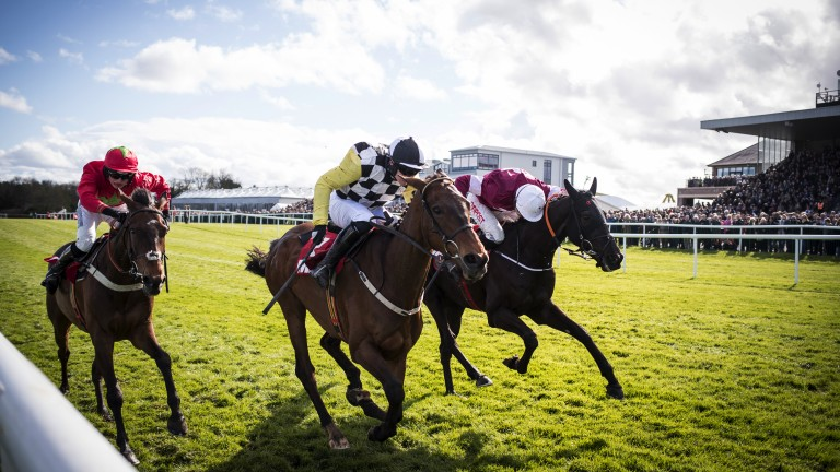 All out: Townend secures a double aboard Next Destination (middle) in the Irish Daily Mirror Novice Hurdle, getting the better of Delta Work (right) and Kilbricken Storm