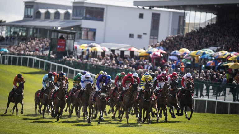 Bumper field: runners in the opening 2m5f handicap hurdle, won by Prince Garyantle (yellow silks), pass the stands for the first time