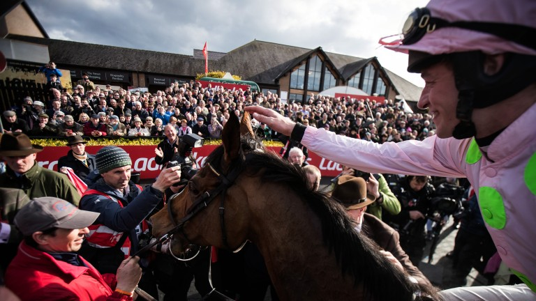A hero's return: the huge crowd welcome back Faugheen to the winner's enclosure