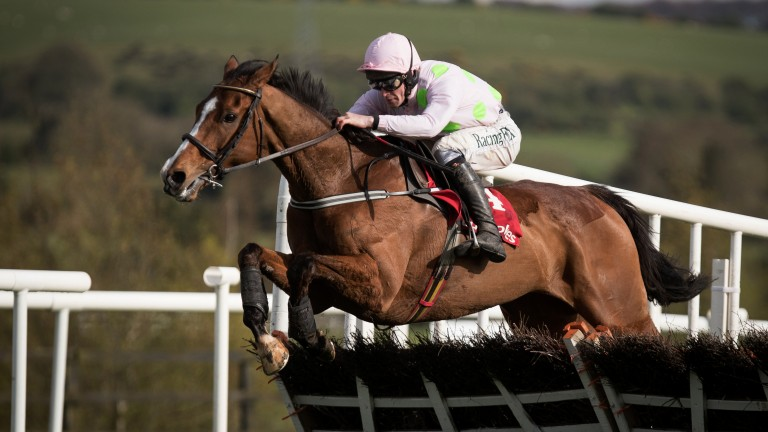 Wonderful to see Faugheen back in the winner's enclosure says Hugo Palmer