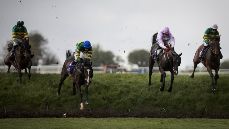 Four in a row: the field for the La Touche Cup, won by Auvergnat (right), take one of the banks