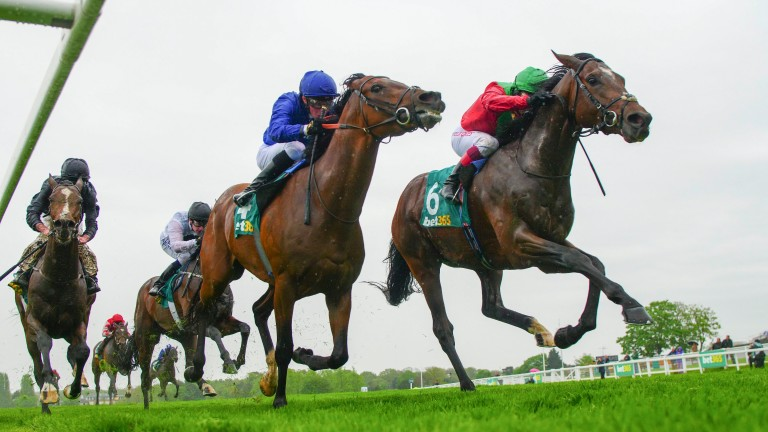 Hunting Horn (far left) and Ispolini chase home Sevenna Star at Sandown in April