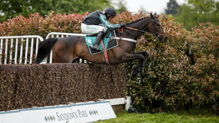 Altior: star chaser is in dashing form according Nicky Henderson