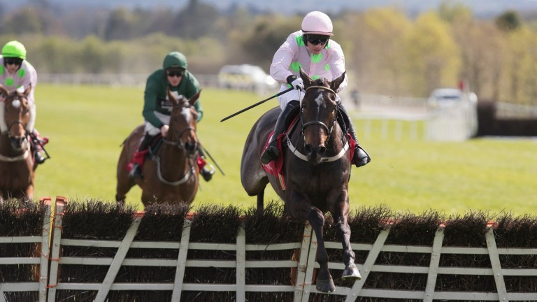 Benie Des Dieux becomes the third horse to do the Cheltenham-Punchestown double this season